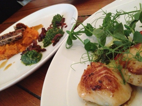 FAT SCALLOPS WITH SLITHERS OF BLACK PUDDING & SWEET POTATO