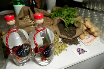 SPICED GIN AND TONICS FROM OPHIR